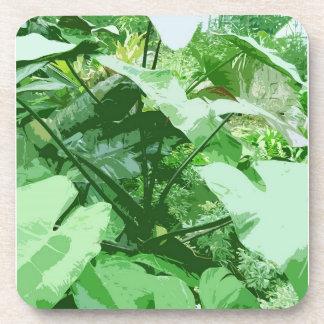 large green leaves beverage coaster