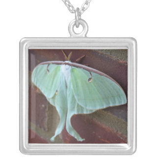 Large Green Moth Square Pendant Necklace