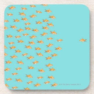 Large group of goldfish facing one lone goldfish beverage coasters