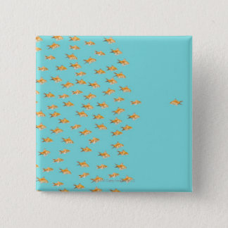 Large group of goldfish facing one lone goldfish pinback button