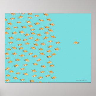 Large group of goldfish facing one lone goldfish poster