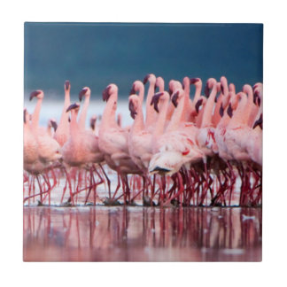 Large Group Of Lesser Flamingos Tile