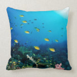 Large group of Ocellated Orange fish swimming Pillow