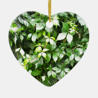 Large growths of green ivy creeping ceramic ornament