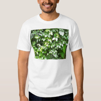 Large growths of green ivy creeping T-Shirt