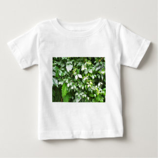 Large growths of ivy creeping wild closeup baby T-Shirt