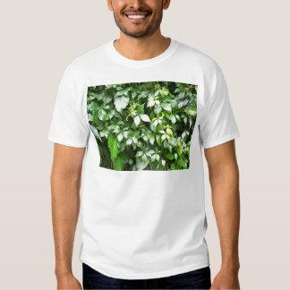 Large growths of ivy creeping wild closeup T-Shirt