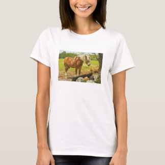 Large Horse Near Stone Wall In Spring Farm Field T-Shirt