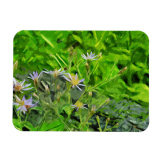 Large Leaved Purple Aster Among Ashes Abstract Magnet