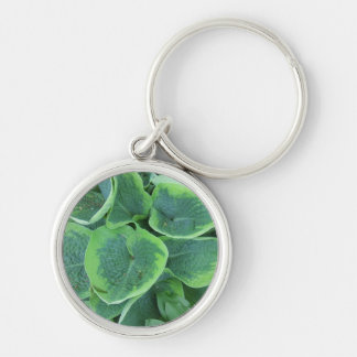 Large Leaves Variegated Hosta Keychain Gardener Gi