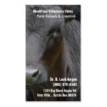 Large Livestock Veterinarian - Black Angus Cow Business Cards
