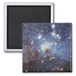 Large Magellanic Cloud Fridge Magnets