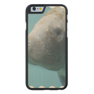 Large Manatee Underwater Carved Maple iPhone 6 Case