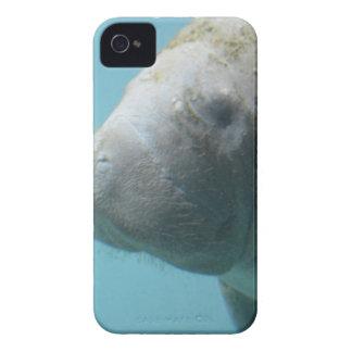 Large Manatee Underwater Case-Mate iPhone 4 Case