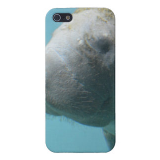 Large Manatee Underwater Cover For iPhone SE/5/5s