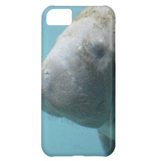 Large Manatee Underwater iPhone 5C Case
