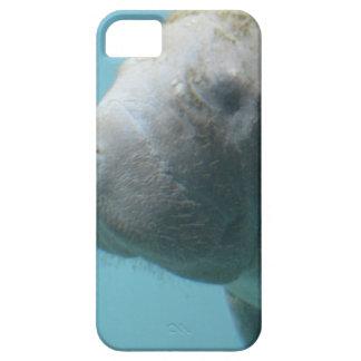 Large Manatee Underwater iPhone SE/5/5s Case