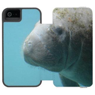 Large Manatee Underwater iPhone SE/5/5s Wallet Case