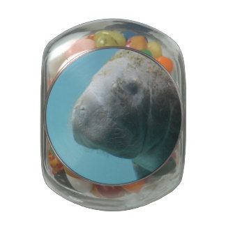 Large Manatee Underwater Jelly Belly Candy Jars
