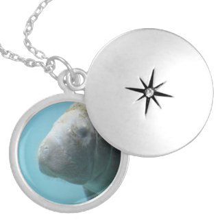 Large Manatee Underwater Locket Necklace