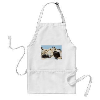 Large Morel with Snail and Wing Tafoni Adult Apron