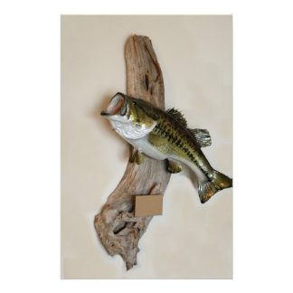 large mouth bass flyer design