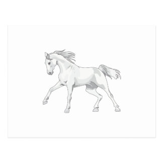 LARGE OPEN HORSE POSTCARD