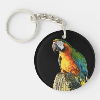 Large Orange and Teal Parrot on a Stump Keychain