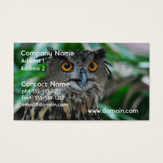 Large Owl Business Cards