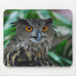 Large Owl Mouse Pad