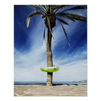 Large palm tree on a sandy beach with inflatable poster