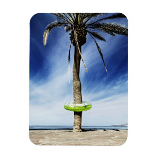 Large palm tree on a sandy beach with inflatable rectangular photo magnet