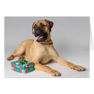 Large pedigree dog with Christmas present Card