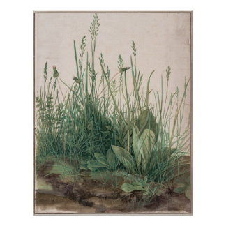 Large Piece of Turf by Albrecht Durer Poster