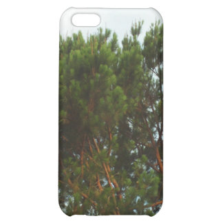 Large Pine Tree iPhone Case Case For iPhone 5C
