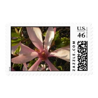 Large Pink Flower Stamp