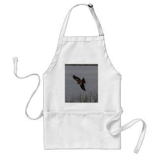 Large predator bird over water aprons