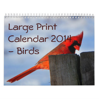 Large Print Calendar 2014 - Birds