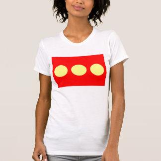 LARGE PRINT Freetown Christiania Flag Shirt