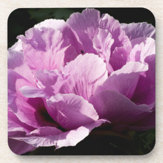 Large Purple Peony Flower Coaster