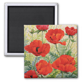 Large Red Poppies 2 Inch Square Magnet