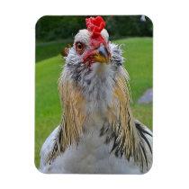 Large Rooster Magnet