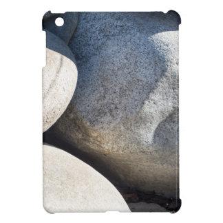 Large round boulders close-up iPad mini cases