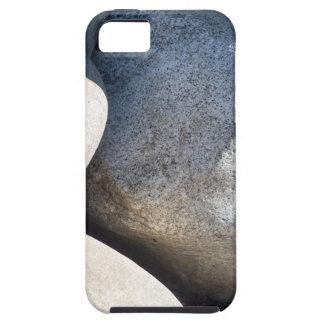 Large round boulders close-up iPhone SE/5/5s case