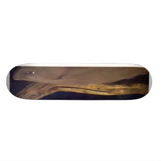 large sea fish skateboard
