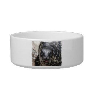 Large Seal Pet Bowl
