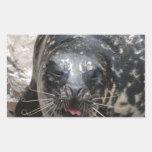Large Seal Rectangular Stickers