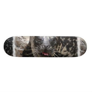 Large Seal Skateboard