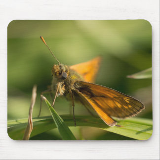 Large Skipper Butterfly Mouse Pad