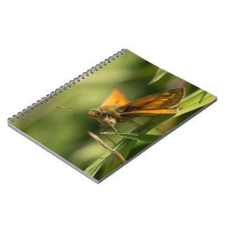 Large Skipper Butterfly Notebook
